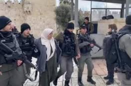 الاحتلال يعتقل سيدة فلسطينية بزعم محاولة تنفيذ عملية طعن في القدس المحتلة