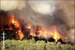 """احراق حقول """"كيبوتس مفلسيم"""" بفعل طائرة ورقية قادمة من غزة"""
