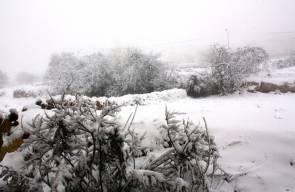 الثلوج تتساقط على الضفة الغربية والقدس المحتلة