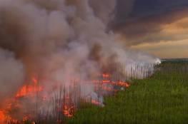 حفل عائلي تسبب بحرق 470 كيلومترا مربعا!