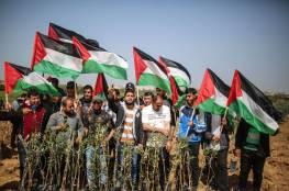 الكويت: نسعى لمشروع بمجلس الأمن لحماية الشعب الفلسطينى