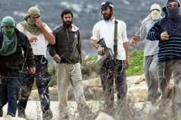 مستوطنون يعتدون بالضرب على فتى فلسطيني بالقرب من نابلس