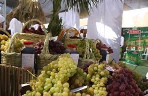 مهرجان العنب الفلسطيني الثاني بالخليل