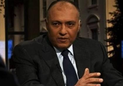 مصر تشارك في قمة التعاون الإسلامي حول فلسطين باسطنبول