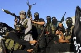 مصر تنفي تصريحات ليبرمان عن قصف اسرائيلي داخل سيناء