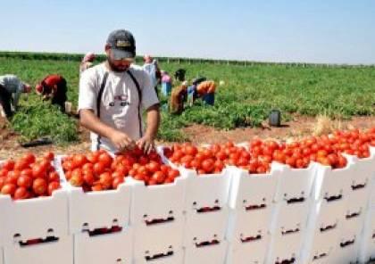 قرار وقف استيراد المنتجات الزراعية من الضفة يدخل حيز التنفيذ