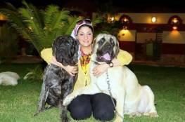 بالصور.. فندق 5 نجوم لاستضافة الكلاب في مصر