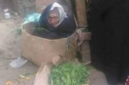صور: مسنَّة مصرية كفيفة تعيش في كرتونة.. هذه قصتها