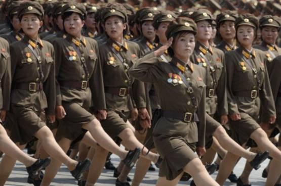 """""""نساء العسل"""".. مصيدة جاسوسية لكوريا الشمالية"""