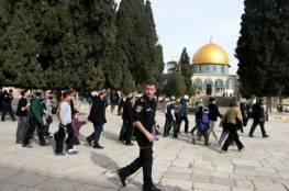 الاحتلال يحظر آذان الفجر عبر مكبرات الصوت في 3 مساجد بأبو ديس