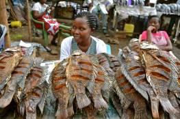 """""""الجنس مقابل السمك"""" أحد أسباب انتشار الأيدز في كينيا!"""