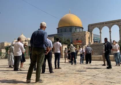 60 مستوطنا يقتحمون الأقصى بحماية شرطة الاحتلال