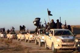 كاتب لبناني : اسرائيل نقلت 300 داعشيا من سوريا عبر الجولان الى سيناء