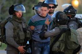 الاحتلال يعتقل 8 فلسطينيين في الضفة والمستوطنون يعربدون في سلفيت