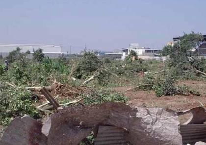 """سلطات الاحتلال تُسلم أراضي فلسطينية إلى مزارعين """"إسرائيليين"""""""