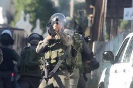 جيش الاحتلال يواصل التنكيل بأهالي برقين
