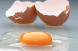 """""""بيض ذهبي"""" يعالج السرطان والتهاب الكبد"""