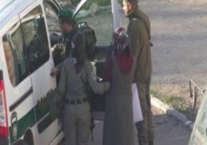 الخليل: اعتقال 3 فتيات بزعم حوزتهن سكاكين
