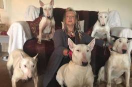 زوج يخير زوجته بعد 25 عاماً بينه وبين الكلاب!