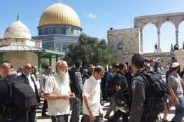 مستوطنون يقتحمون المسجد الأقصى صباح اليوم من جهة باب المغاربة