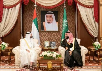 صور ..محمد بن زايد ومحمد بن سلمان يترأسان الاجتماع الأول لمجلس التنسيق السعودي الإماراتي