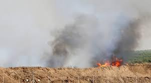 اندلاع حريق في  نيريم  بفعل بالون حارق أطلق من غزة - سما الإخبارية