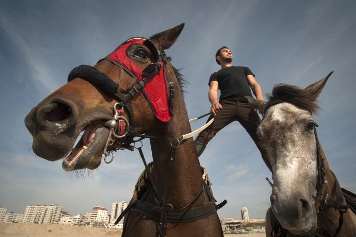 غزة تحتضن بطولة لقفز الحواجز بالخيول - سما الإخبارية